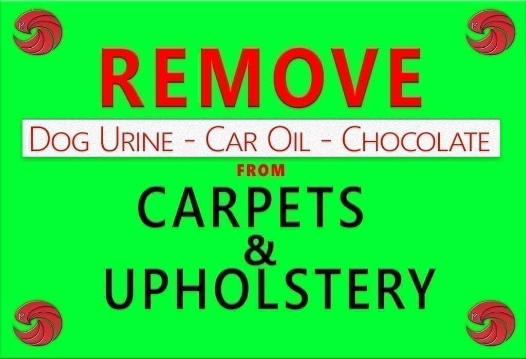 stain removal tips vol 3 dog urine car oil chocolate. Black Bedroom Furniture Sets. Home Design Ideas